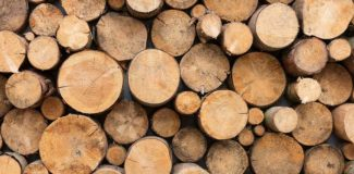 best wood for sales displays